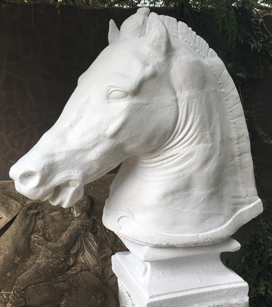 Dear Stella, Outdoors, Medici horse statue, Vasco Stone