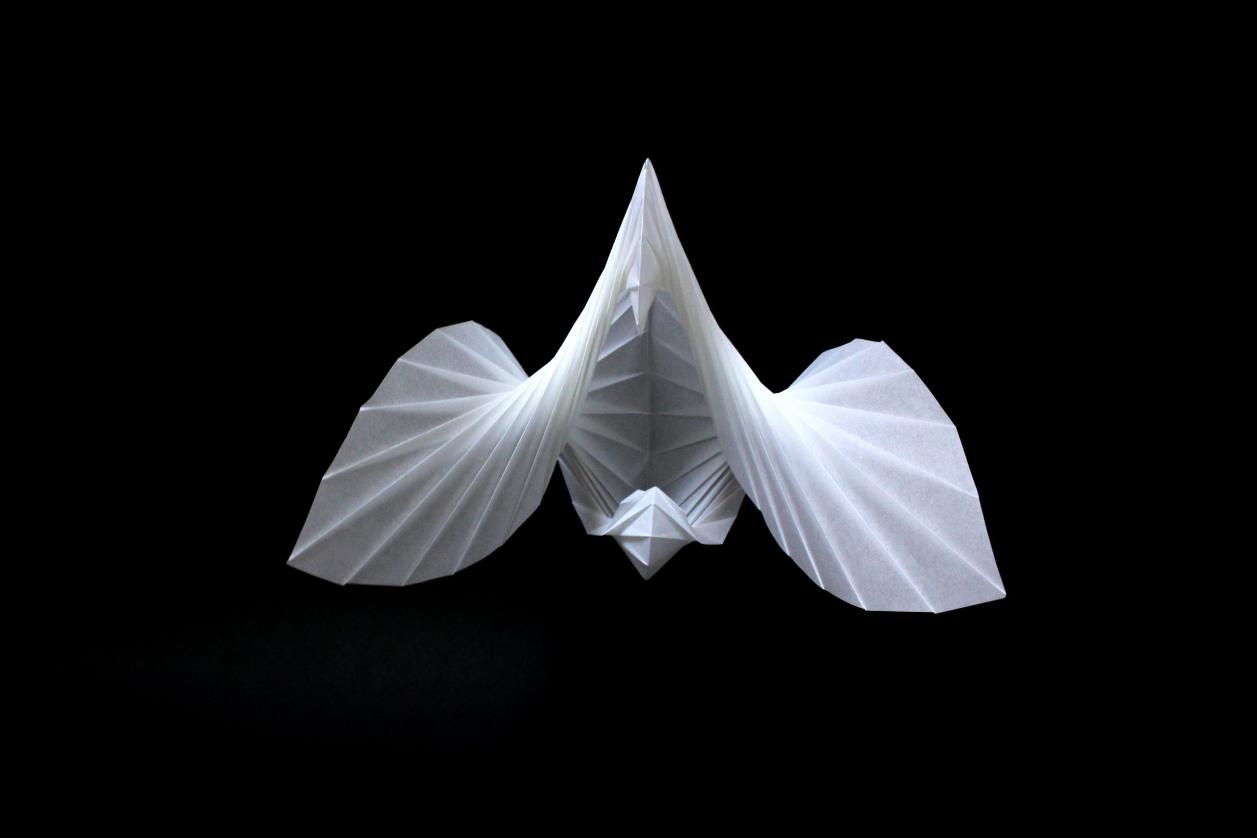 Maia Lehr Sacks, Origami art, Three dimensional art, Paper, Experimental